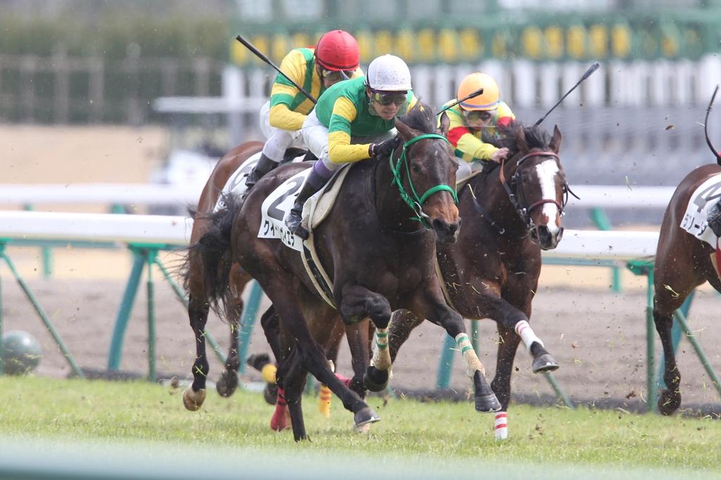 2012年3月25日 高松宮記念_f0204898_7171149.jpg