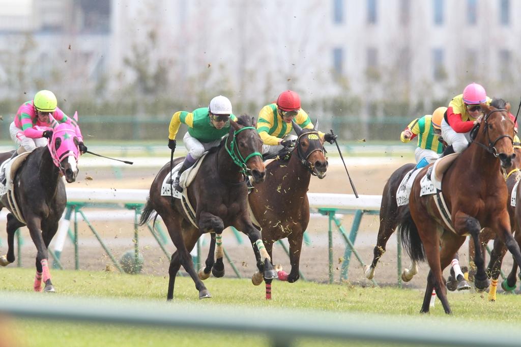 2012年3月25日 高松宮記念_f0204898_717138.jpg