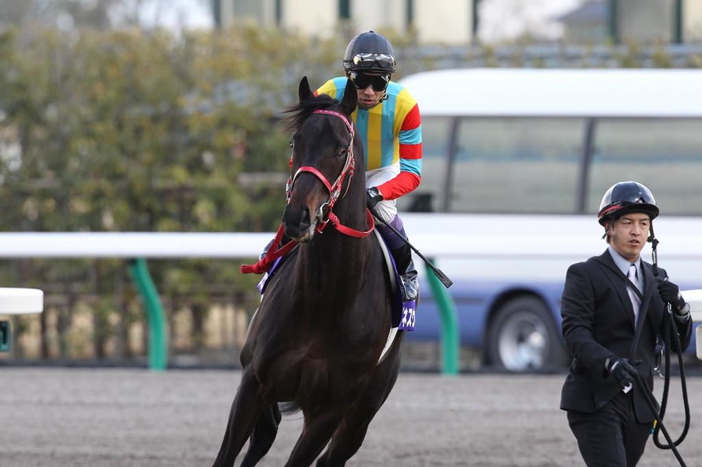 2012年3月25日 高松宮記念_f0204898_7212535.jpg