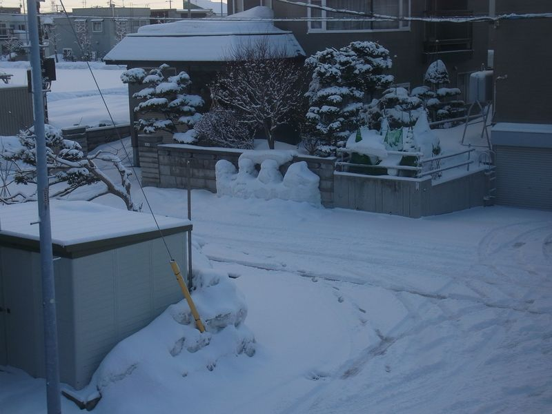 Winter again_c0025115_19394710.jpg