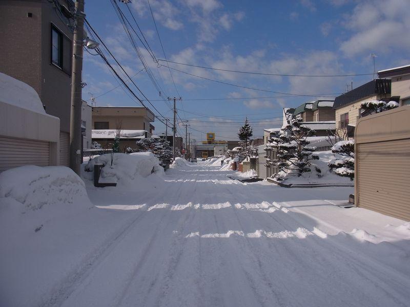 Winter again_c0025115_19432538.jpg