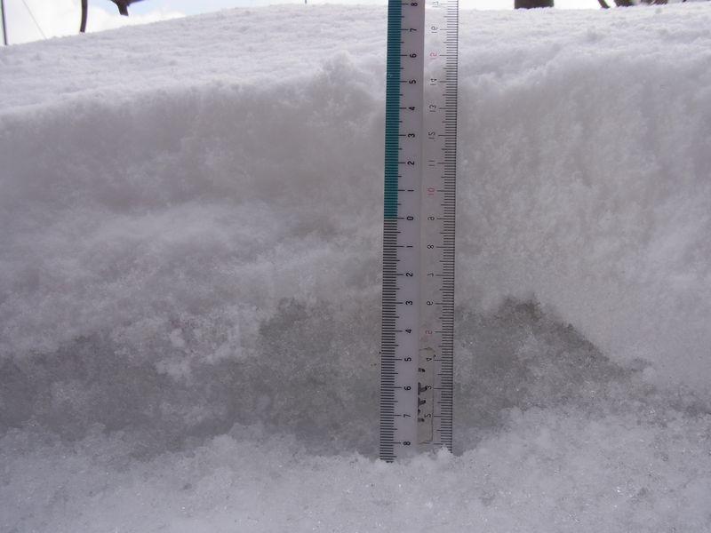 Winter again_c0025115_19454957.jpg