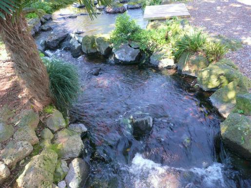公園の湧水_c0087349_8321863.jpg
