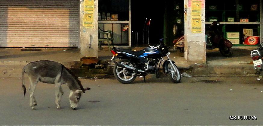 インド旅行記 22 ジャンスィーへ_a0092659_1135875.jpg