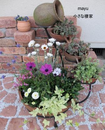 春の寄せ植え♪_a0243064_19142938.jpg