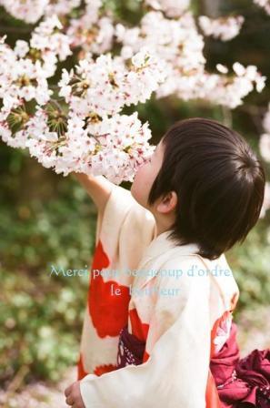 桜写真館 はじまります♪_e0170966_20441141.jpg