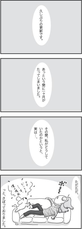 c0178169_73771.jpg