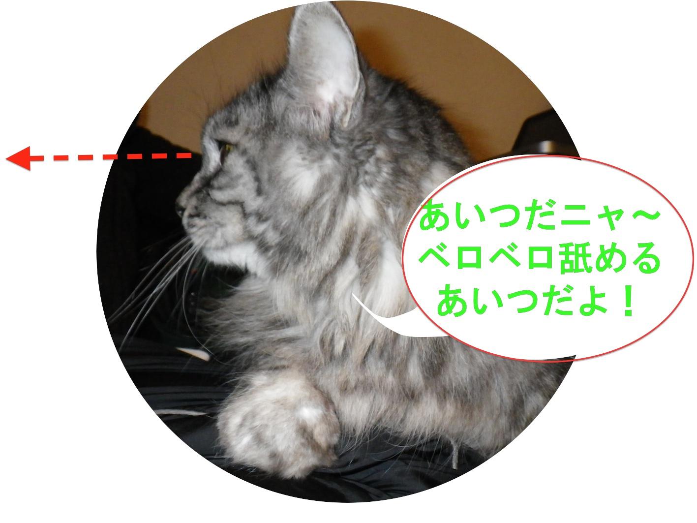 c0238473_39632.jpg