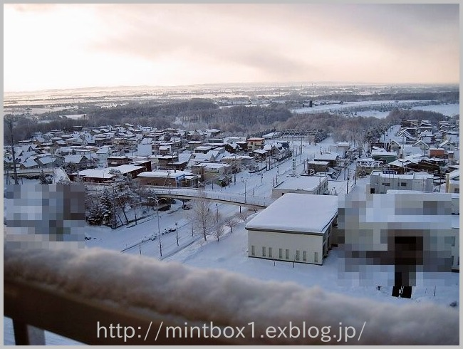 真冬かっ!_a0008185_8461100.jpg
