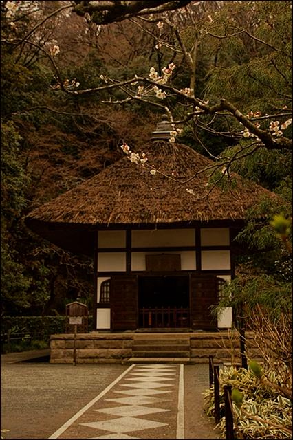 北鎌倉 明月院の丸窓_b0145398_23412074.jpg