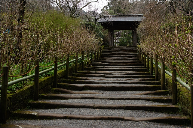 北鎌倉 明月院の丸窓_b0145398_2341376.jpg