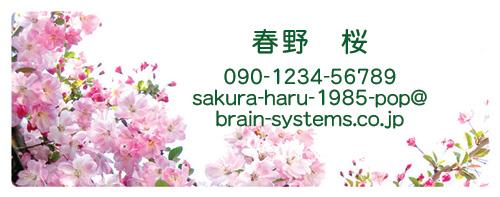 私たちって桜好き!(?)_d0225198_9514130.jpg