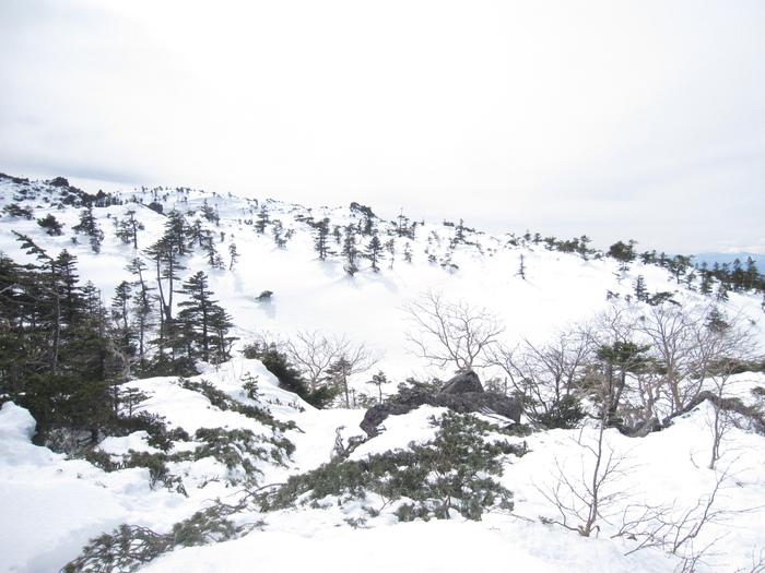 東天狗岳登頂ー_e0155231_19235215.jpg