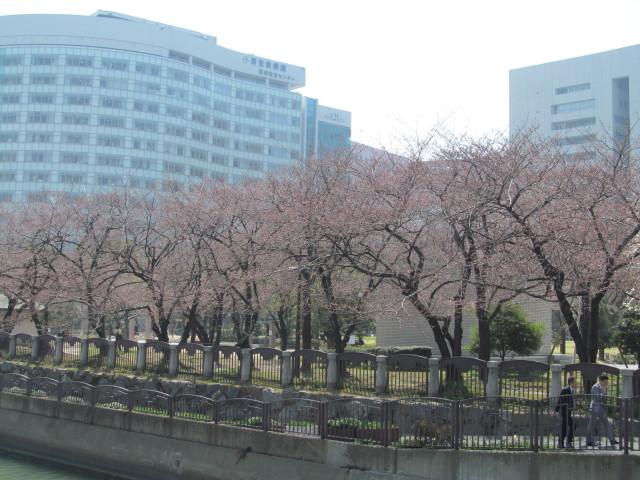 春がきたっ!!_d0140234_20382946.jpg
