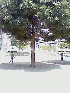 f0150945_12414892.jpg