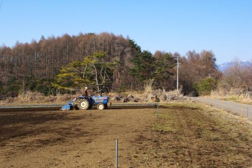 2012年初の肥料撒き_c0110869_16152590.jpg