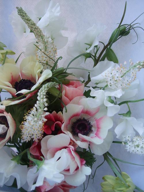 オークリーフ(アネモネ・バイカラーと白いバルビネラの花束)_f0049672_1136921.jpg