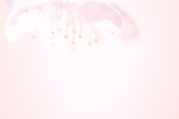 c0203584_049694.jpg