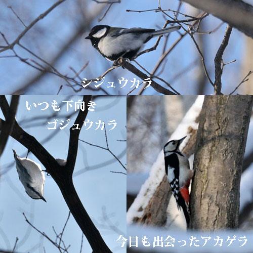 f0212586_7124835.jpg