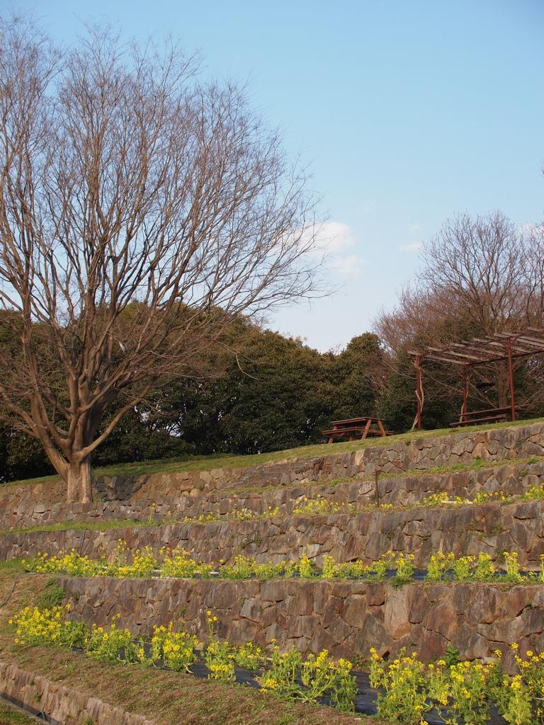 「鶴見緑地にて」_a0133692_2321139.jpg