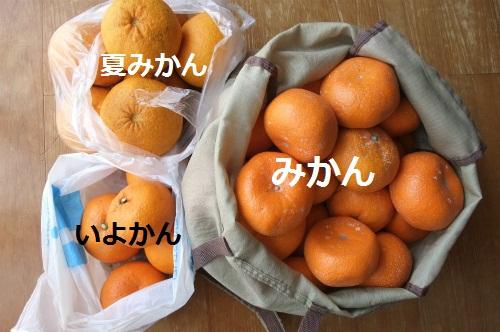 b0007594_2129337.jpg