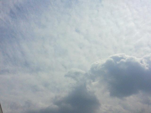 お休み明けですヽ(*^^*)ノ_c0140599_12274022.jpg