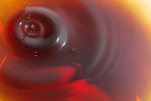 醤油三昧_f0155808_17181187.jpg