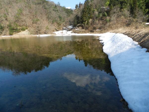 冬期湛水_e0243209_2245067.jpg