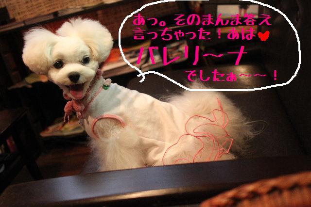 b0130018_9201146.jpg