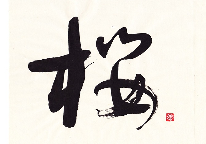 桜の季節に思うこと_d0168831_1273878.jpg
