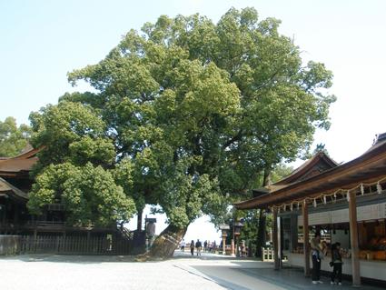 香川の旅 6_a0099744_22551178.jpg