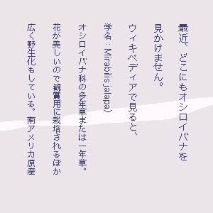 a0134863_9205517.jpg