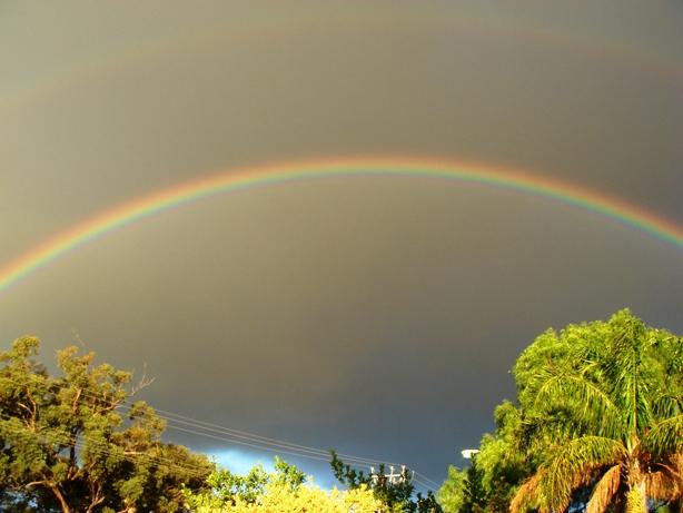 虹。_f0234165_15592657.jpg