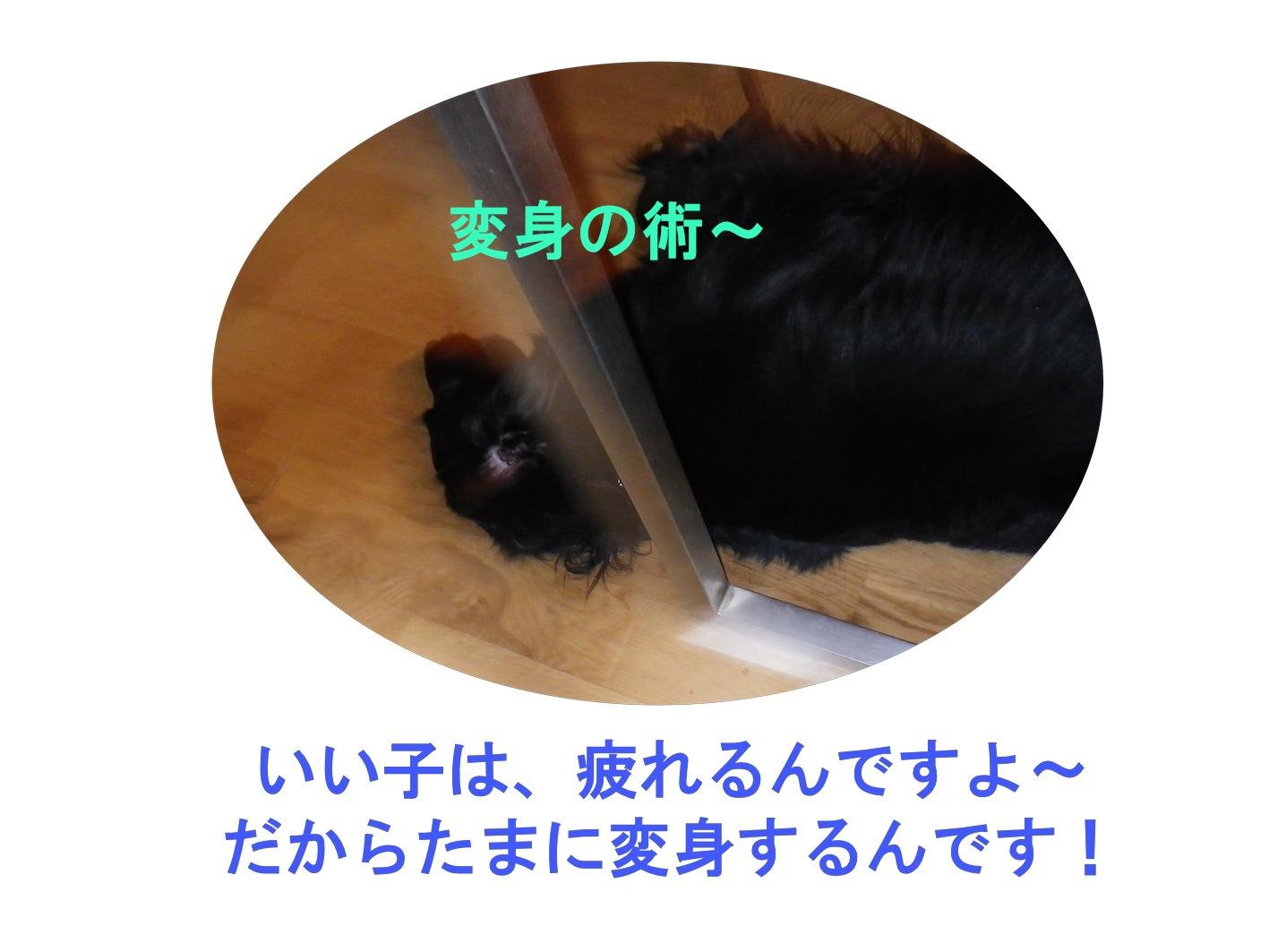 c0238473_2421813.jpg