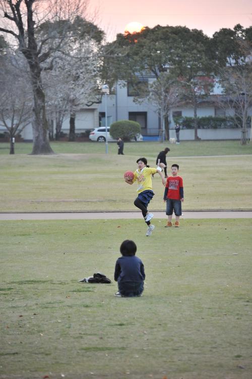 宮崎市 文化公園_a0043276_7235725.jpg
