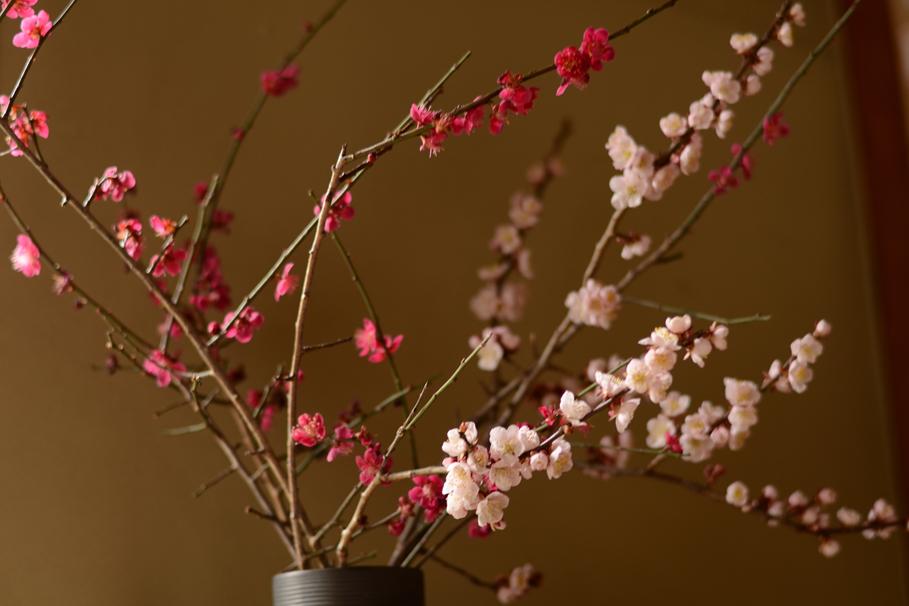 小さな春_b0194880_13213589.jpg