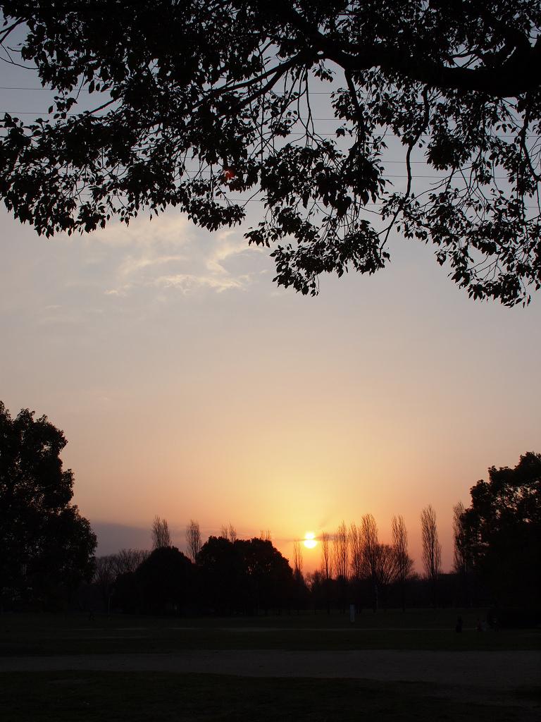 「鶴見緑地にて」_a0133692_07347.jpg