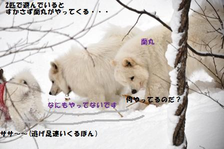 f0212597_9262414.jpg