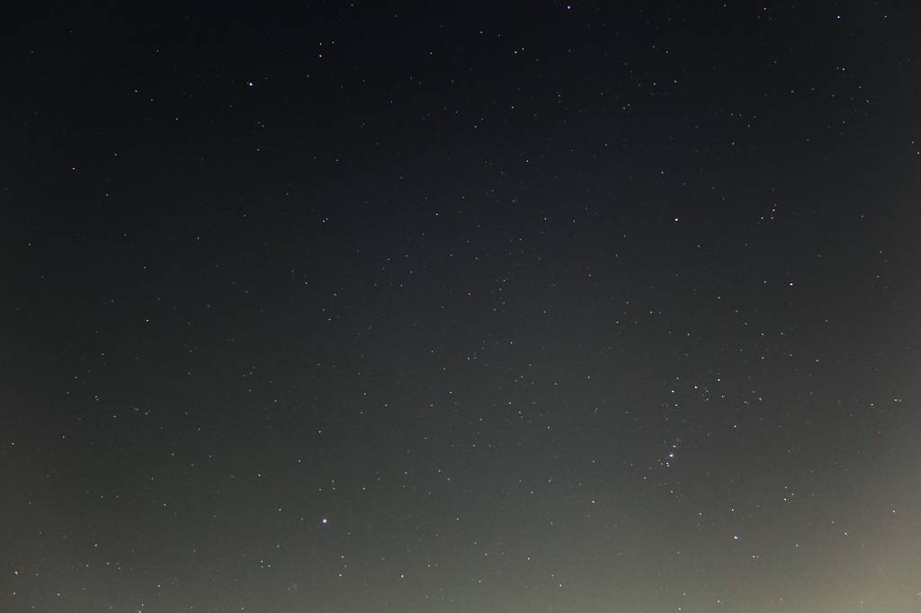 牽制しあうアカハラ&ツグミ/しし座の火星&冬の大三角形_b0024798_107610.jpg