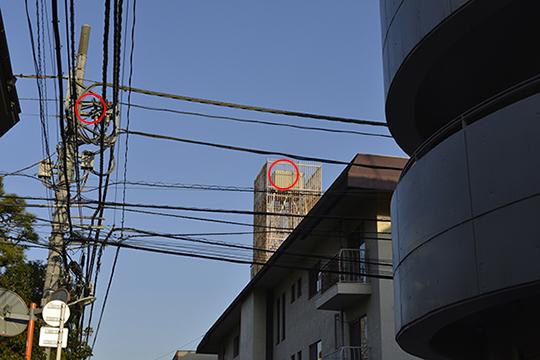 Nikon D800 ファーストインプレッション!_b0194208_0582793.jpg