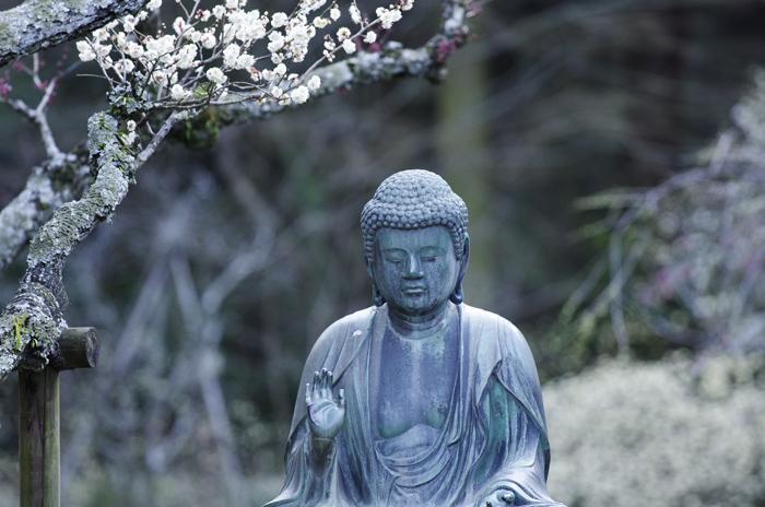 東慶寺の3月 5_b0151409_21541833.jpg