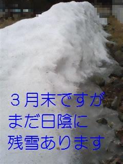 b0200310_903141.jpg