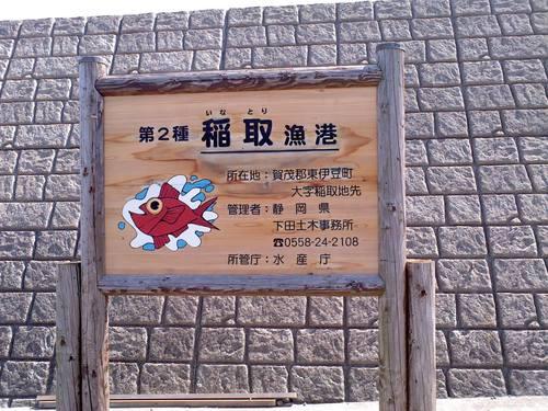天城~越え~♪_f0129627_10531893.jpg