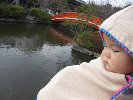神泉苑まで散歩_d0229469_21321151.jpg