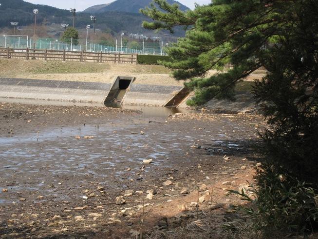 湧水の里の風景⑦~十六沼_a0087378_5135099.jpg