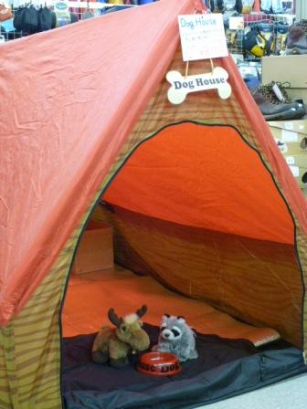 やばいテント、来たーーー!!!_d0198793_16592433.jpg