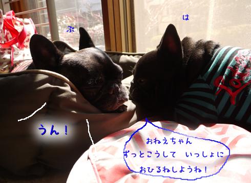 b0134197_14952.jpg
