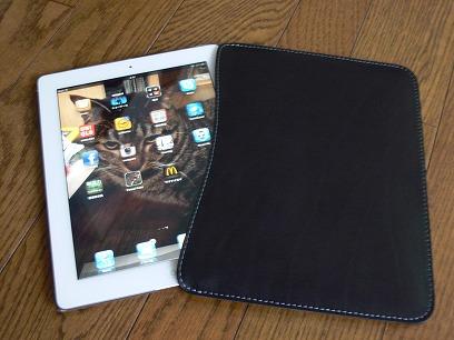 旅の線-道具-音楽映像-iPad2 in ブッテーロレザースリーブ_c0153302_16531810.jpg