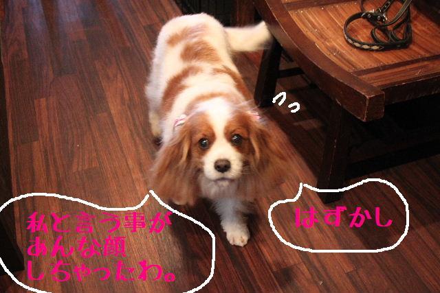 b0130018_20115056.jpg