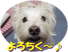 f0084422_15431360.jpg
